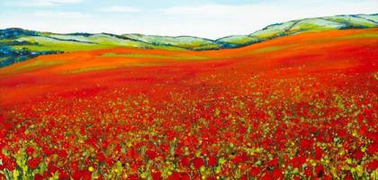 Poppyfield by Becca Clegg